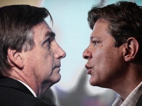 haddad vs bolsonaro